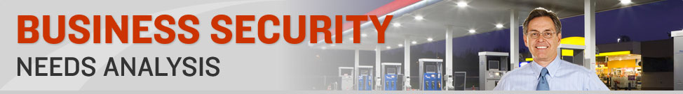 Business Security Needs Analysis