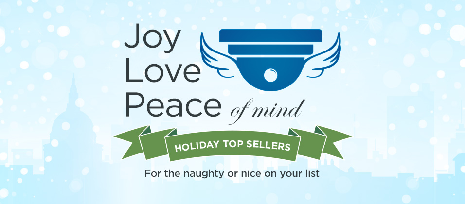 Top Selling Holiday Gifts for the Naughty or Nice on Your List.